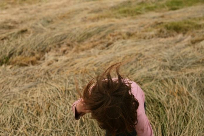 haycutting02