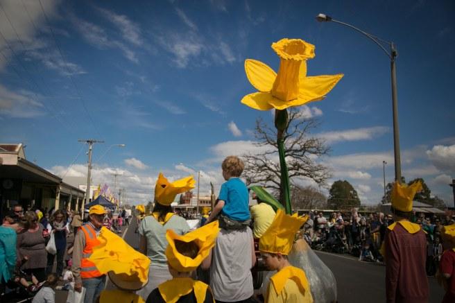 DaffodilFest2014-59